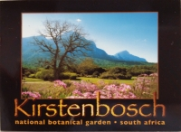 My Life Lesson Learnt in Kirstenbosch Gardens