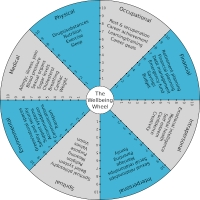 The Wellbeing Wheel
