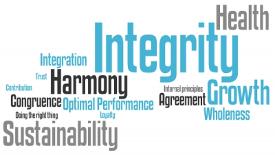 Integrating Integrity